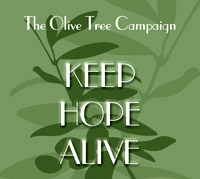 Olive Tree Campaign