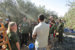 Olive Picking Program 2016