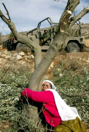 Palestinian Land Day - Call for Actions